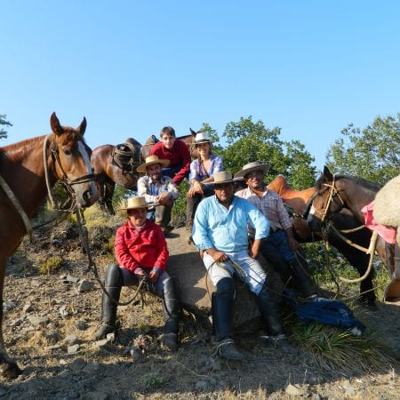 Farmarbeit Chile
