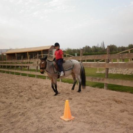 Pferdetherapie Chile