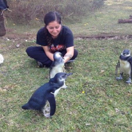 Tierschutzprojekt Chiloé
